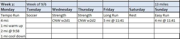 Week 8 plan
